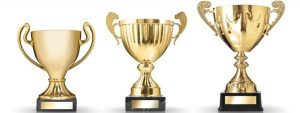 Explore the wonderful collection of custom awards and trophies